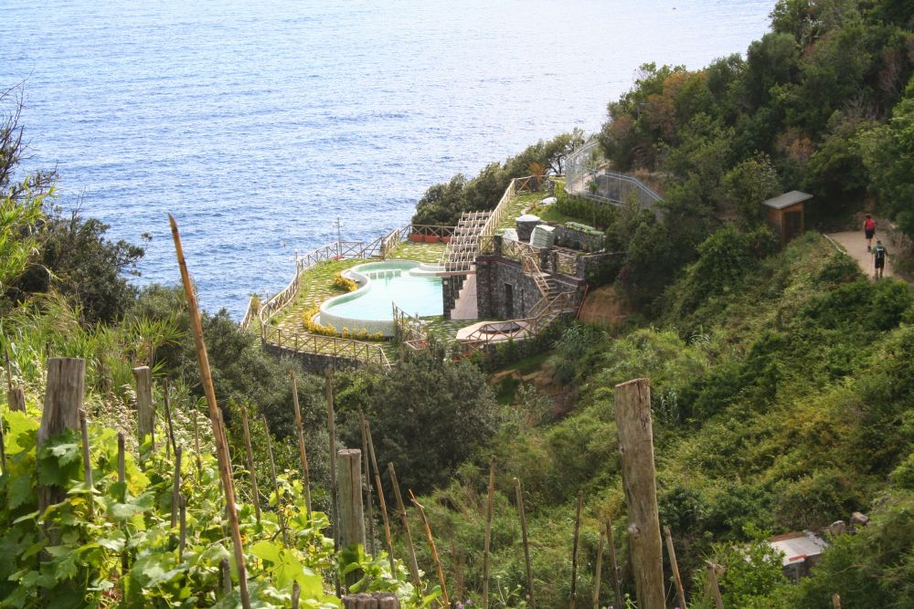 Vineyards and Pool